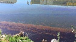 La nappe de pétrole qui menaçait la Côte d'Azur en grande partie