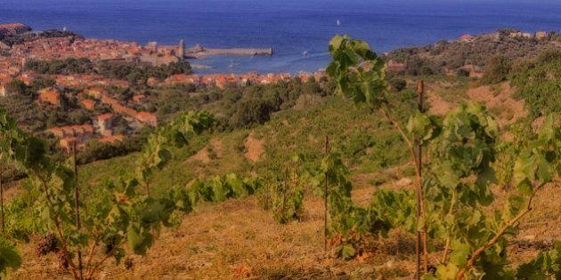 Vue générale de la baie de Collioure, Frrance.