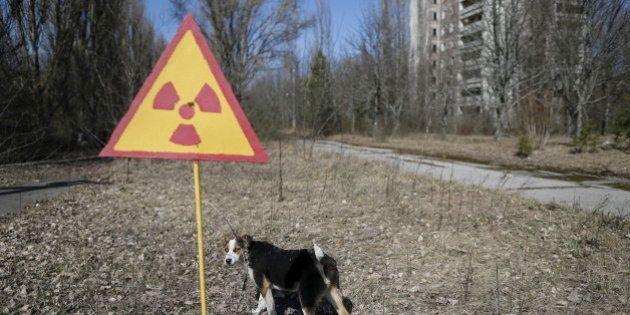 L'accident nucléaire de Tchernobyl a-t-il vraiment créé des