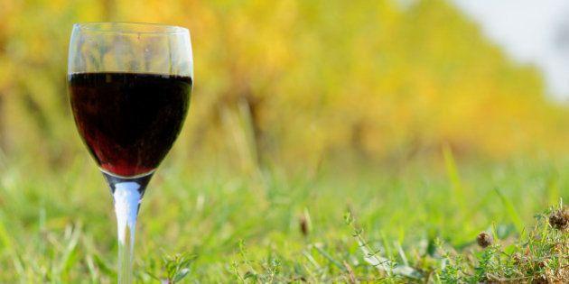 Glass of Bordeaux wine among