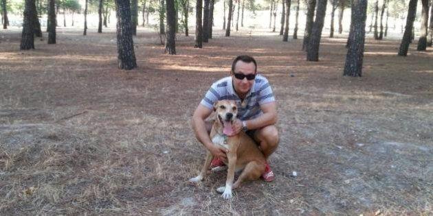 Ebola en Espagne: polémique sur l'euthanasie d'Excalibur, le chien de l'aide-soignante