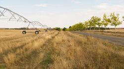 De nouvelles pratiques agricoles pour faire face à la