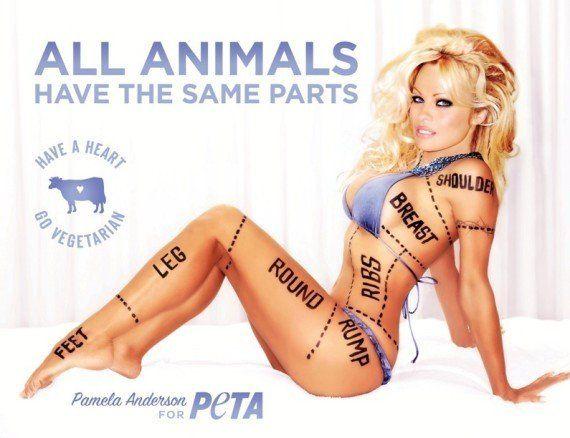 PHOTO. Zahia Dehar nue pour une campagne pro-végétarienne de la