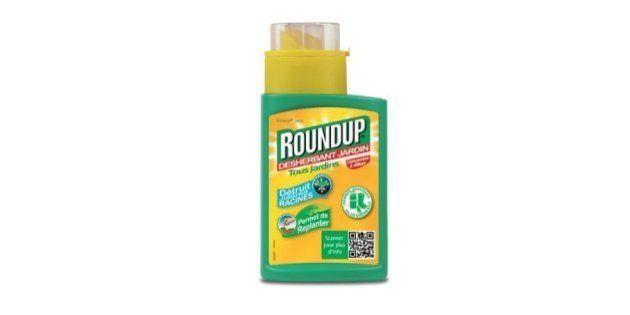 Désherbant Roundup: Ségolène Royal veut interdire la vente en libre service aux particuliers dès le 1er...