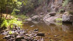La Tara, rivière des Balkans, mon