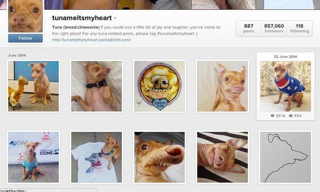 Instagram : 10 conseils pour avoir plus d'abonnés et de