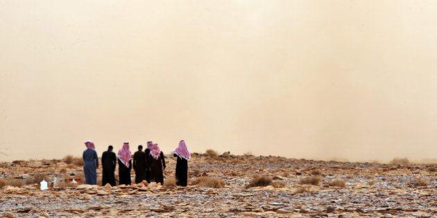 Menacés par le réchauffement climatique, les pays du Golfe freinent (encore) la