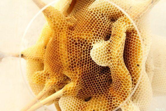 Des sculptures en cire d'abeilles par l'artiste chinois Ren