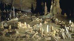 La grotte habitée la plus ancienne au monde est française (176.500