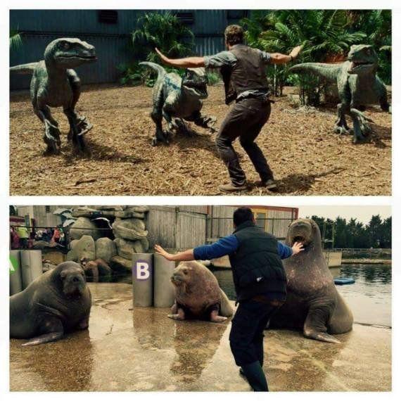 PHOTOS. Jurassic World : des dresseurs de zoos parodient la scène avec Chris