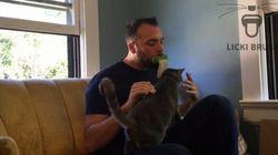 Licki brush, une langue en silicone pour lécher votre chat comme un chat. Oui,