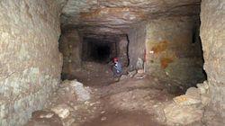 8 millions de chiens momifiés découverts dans des catacombes