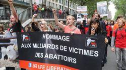 Des centaines de personnes défilent à Paris pour la fermeture des