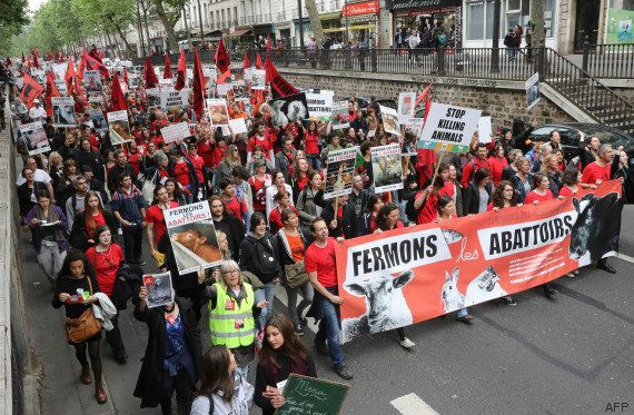Plusieurs centaines de personnes défilent à Paris