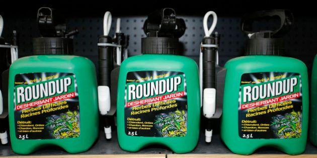 L'Union européenne n'a toujours pas réussi à se mettre d'accord sur l'interdiction du glyphosate, le...