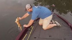 Ils pêchent... deux