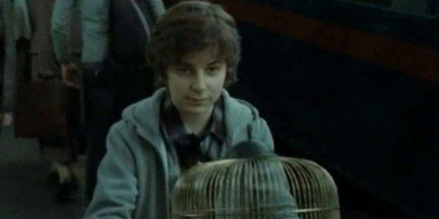 Le fils aîné d'Harry Potter a rejoint la maison Gryffondor pour son arrivée à
