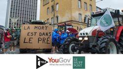 Soutien populaire à la mobilisation des éleveurs [SONDAGE