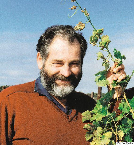 Changement climatique: crème solaire pour raisins et plants résistants à la chaleur pour les