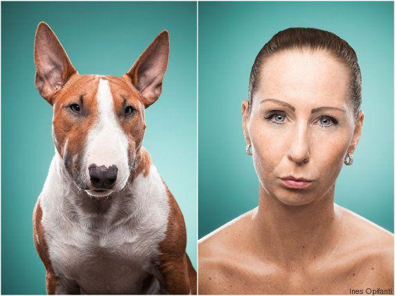 PHOTOS. La ressemblance entre les chiens et leur maître est à double