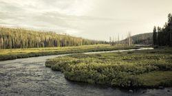 Le Yellowstone National Park en 10