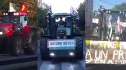 Les Parisiens fascinés par le défilé des