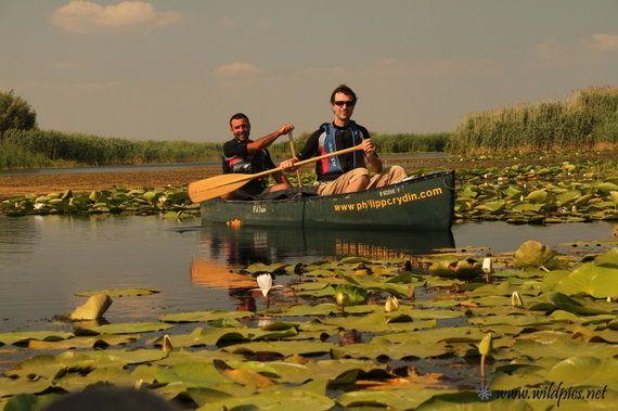 Le delta du Danube en canoë, dépaysement
