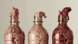 PHOTOS. De la nourriture dans des bouteilles en plastique pour faire réfléchir sur notre