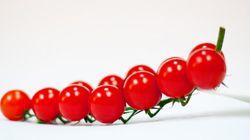 Comment la tomate cerise est devenue la meilleure amie de
