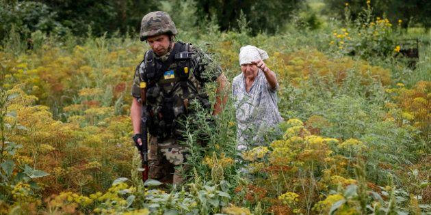 D'Ukraine en Russie : 171 vaches volées passent la
