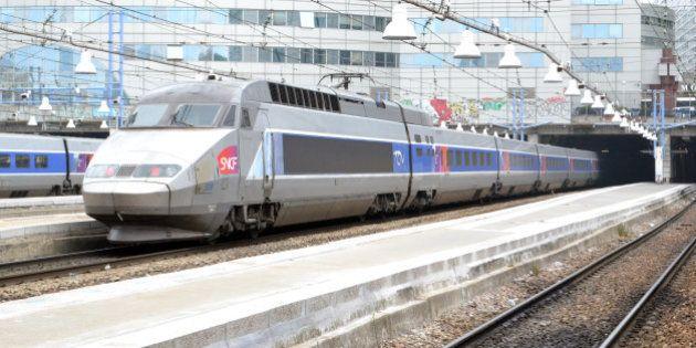 La réforme ferroviaire, à l'origine d'une longue grève, définitivement adoptée par le