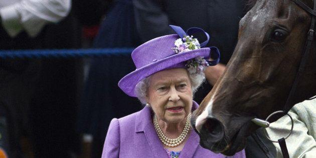L'un des chevaux de la Reine Elizabeth II contrôlé