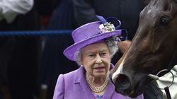 L'un des chevaux d'Elizabeth II contrôlé