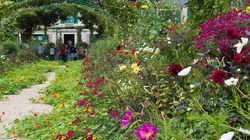 Comment entretenir son jardin pendant
