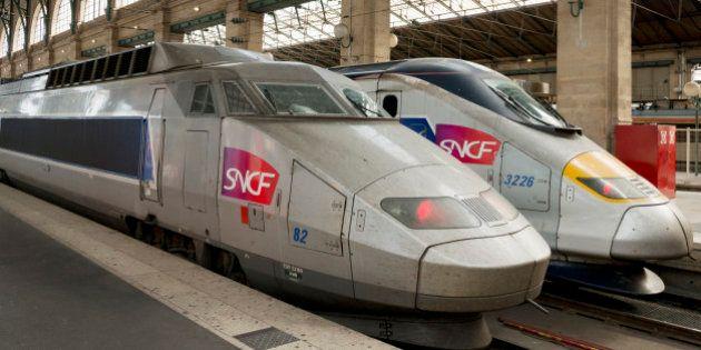 Two SNCF TGV trains waiting at platforms inside Gare du Nord station, Paris, France,