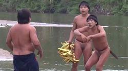 Premier contact d'une tribu