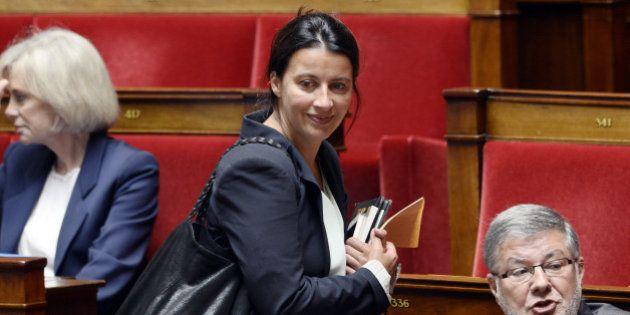 Cécile Duflot à l'Assemblée nationale: nouvelle vie pour l'ex-patronne des