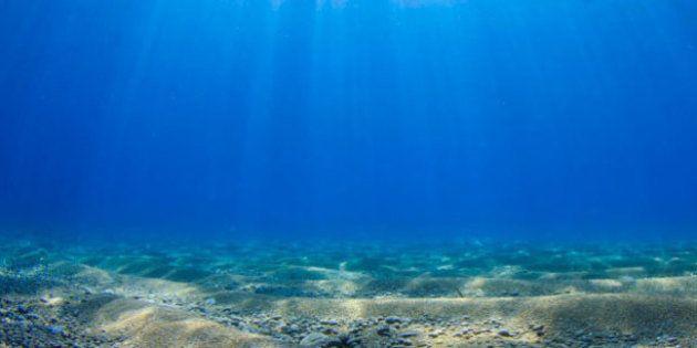 La captation de l'eau douce sous-marine : une solution pour le déficit en eau