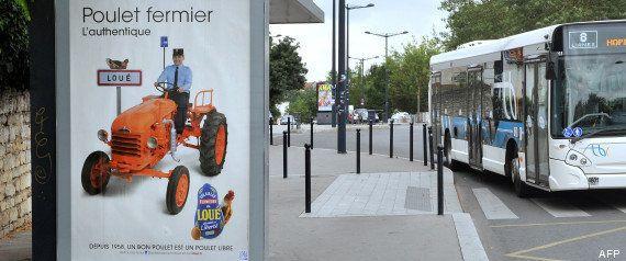 Poulets de Loué: la nouvelle campagne de publicité ne plait pas à Christian