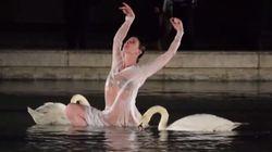 Cette étoile de l'Opéra de Paris danse vraiment avec des