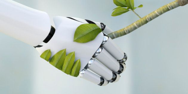 Robot hand and twig shaking hands, 3D