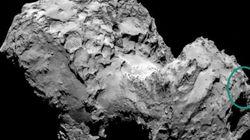 Voyez-vous un visage sur la comète photographiée par