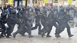 Barrage de Sivens: Des manifs à Nantes, Toulouse et Lille