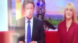 Un robot insulte des présentateurs de la BBC en