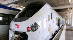 La SNCF a commandé 2000 TER trop larges pour entrer en