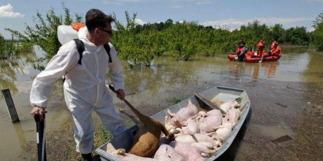 Inondations: les Balkans attendent de nouvelles crues et craignent des