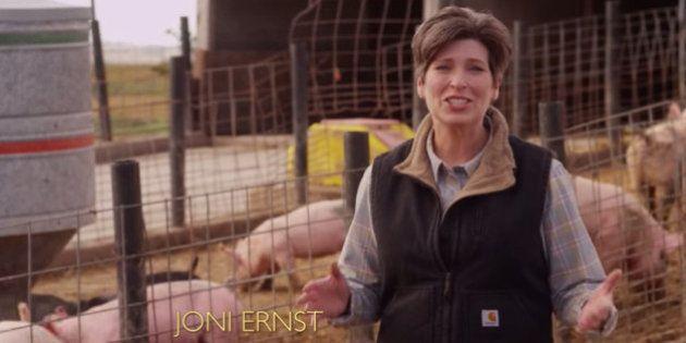 Midterms : Joni Ernst, castreuse de porcs et révélation des élections de mi-mandat aux
