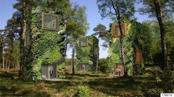PHOTOS. Des maisons arboricoles pour en finir avec la traditionnelle