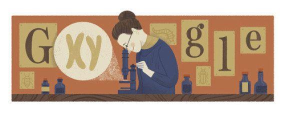Nettie Stevens à l'honneur sur Google : comment sont créés les doodles