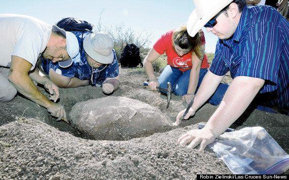 PHOTOS. Une tortue fossilisée de 90 millions d'années découverte par un randonneur du